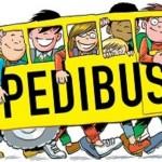 site_gallery_pedibus1